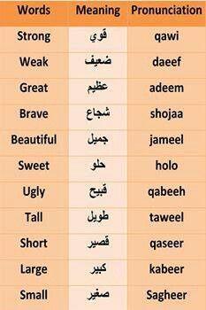 arabic phrases in english pdf