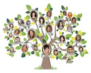 Family Tree 04