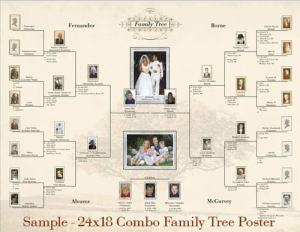 family tree software 01