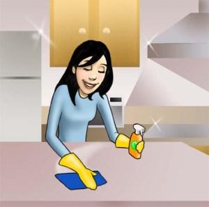 flies - clean Kitchen