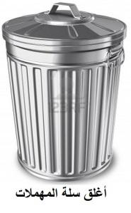 flies - trash can