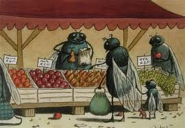 fruit fly 1