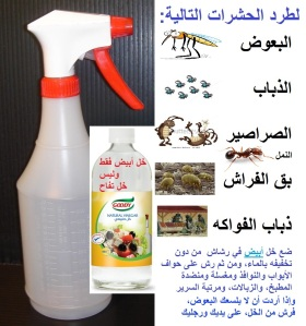 White-Vinegar-Spray-Bottle