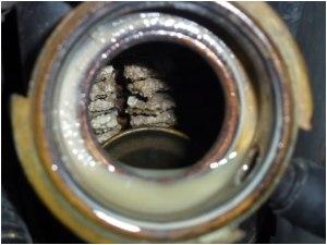 radiator calcium build up1