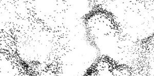 Flocking behavior 01
