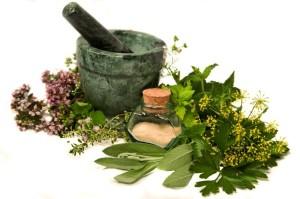 Medicinal-Herbs