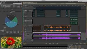 audio 5