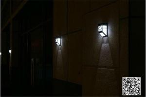 Solar-Panel-Garden-Light (4)
