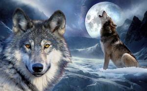 Dangerous Wolf 02