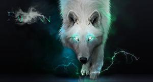 Dangerous Wolf 10