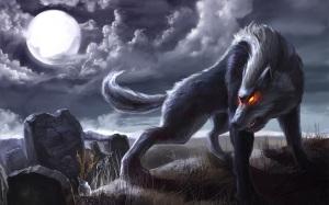 Dangerous Wolf 13