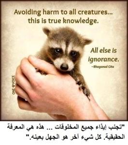 compassion vs cruelty 10