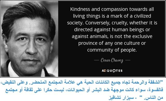 compassion vs cruelty 3
