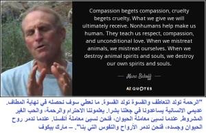 compassion vs cruelty 4