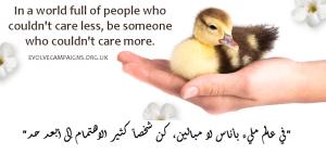 compassion vs cruelty 9