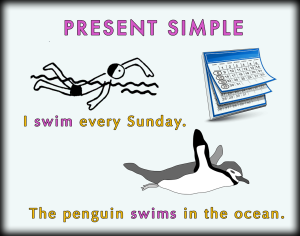Present Simple 06