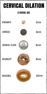 Cervical Dilation 09