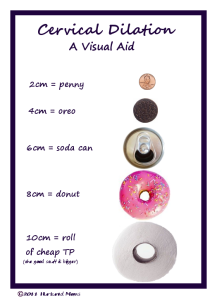 Cervical Dilation 13